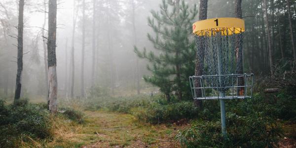 disk golf net