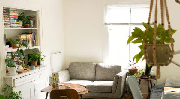 Macrame plant hanger in living room
