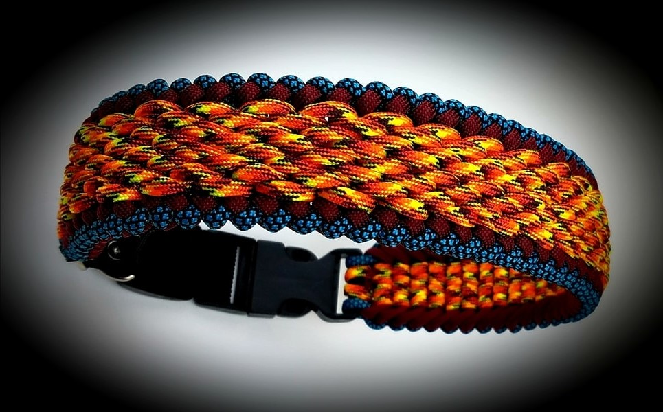Apex Dog Collars and Leashes orange collar