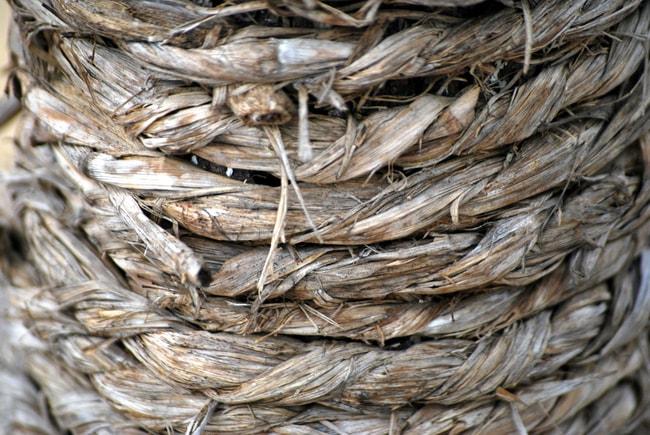 plant fiber rope