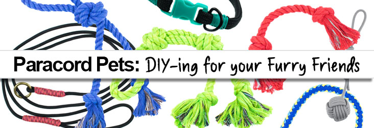 Paracord Pets - DIYing for your furry friends